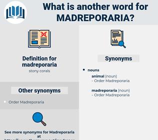 madreporaria, synonym madreporaria, another word for madreporaria, words like madreporaria, thesaurus madreporaria