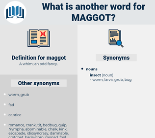 maggot, synonym maggot, another word for maggot, words like maggot, thesaurus maggot