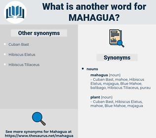 mahagua, synonym mahagua, another word for mahagua, words like mahagua, thesaurus mahagua