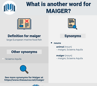 maiger, synonym maiger, another word for maiger, words like maiger, thesaurus maiger