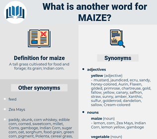 maize, synonym maize, another word for maize, words like maize, thesaurus maize