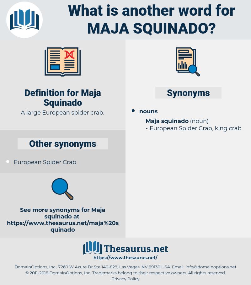 Maja Squinado, synonym Maja Squinado, another word for Maja Squinado, words like Maja Squinado, thesaurus Maja Squinado