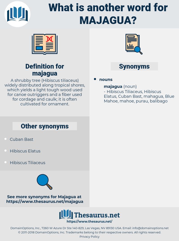 majagua, synonym majagua, another word for majagua, words like majagua, thesaurus majagua