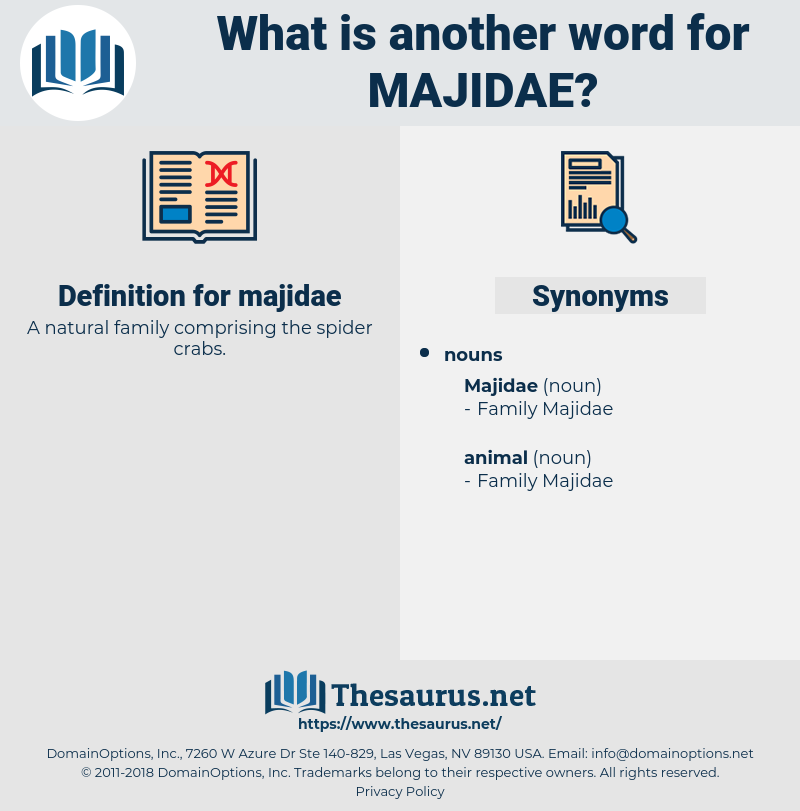 majidae, synonym majidae, another word for majidae, words like majidae, thesaurus majidae