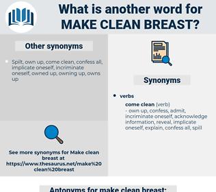 make clean breast, synonym make clean breast, another word for make clean breast, words like make clean breast, thesaurus make clean breast