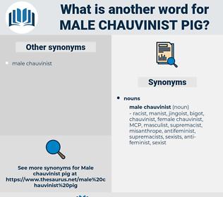 male chauvinist pig, synonym male chauvinist pig, another word for male chauvinist pig, words like male chauvinist pig, thesaurus male chauvinist pig
