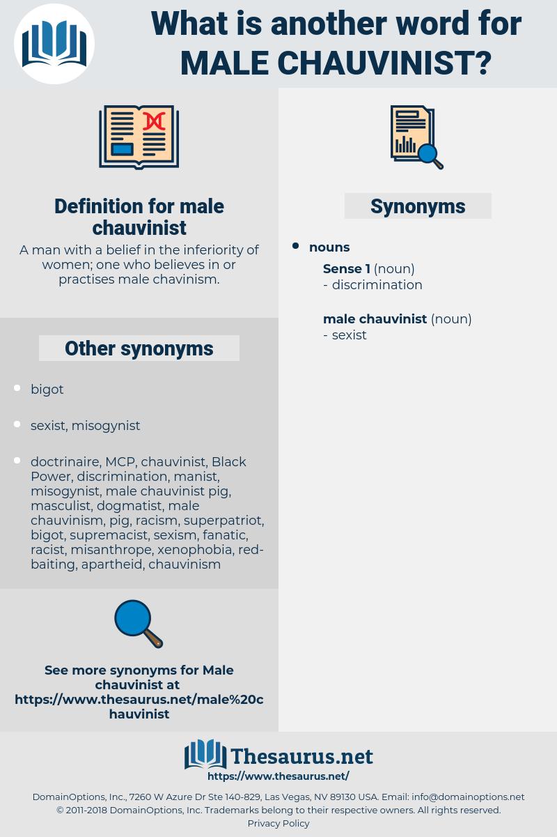 male chauvinist, synonym male chauvinist, another word for male chauvinist, words like male chauvinist, thesaurus male chauvinist