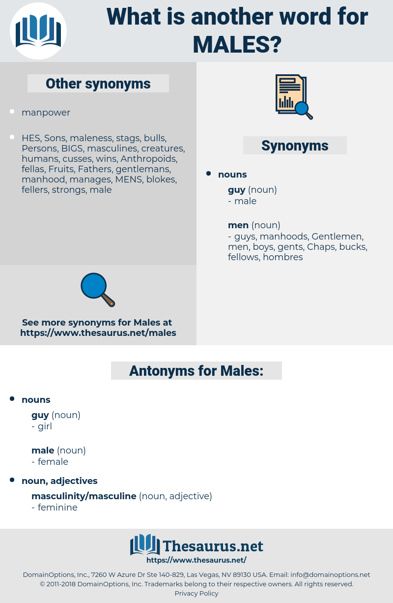 Males, synonym Males, another word for Males, words like Males, thesaurus Males