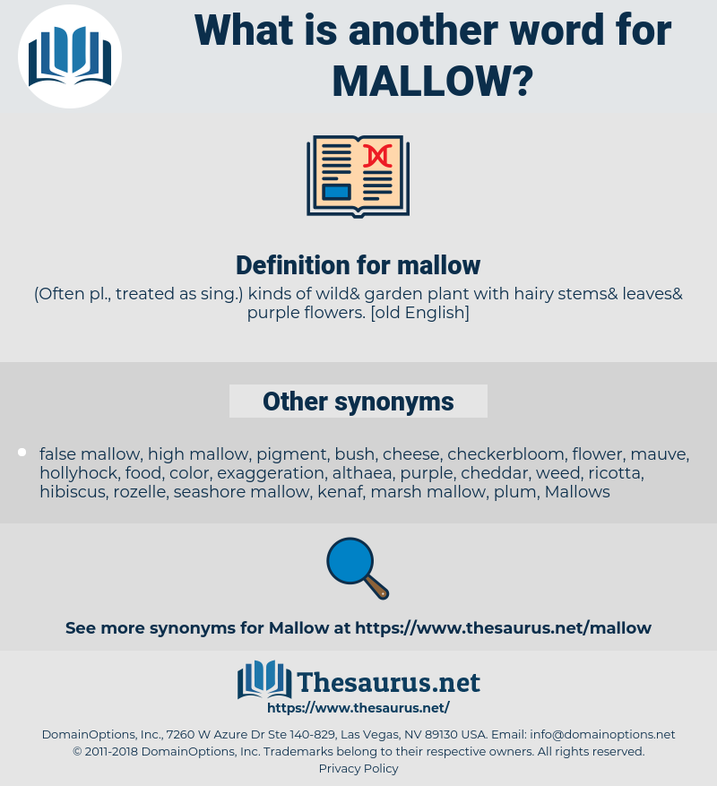 mallow, synonym mallow, another word for mallow, words like mallow, thesaurus mallow