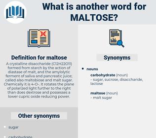 maltose, synonym maltose, another word for maltose, words like maltose, thesaurus maltose