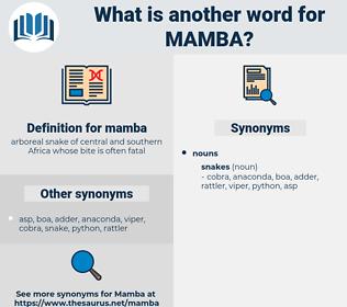 mamba, synonym mamba, another word for mamba, words like mamba, thesaurus mamba