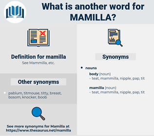 mamilla, synonym mamilla, another word for mamilla, words like mamilla, thesaurus mamilla