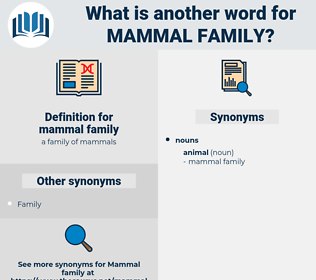 mammal family, synonym mammal family, another word for mammal family, words like mammal family, thesaurus mammal family