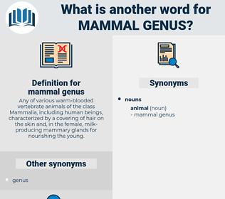 mammal genus, synonym mammal genus, another word for mammal genus, words like mammal genus, thesaurus mammal genus