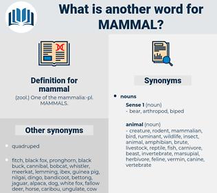 mammal, synonym mammal, another word for mammal, words like mammal, thesaurus mammal
