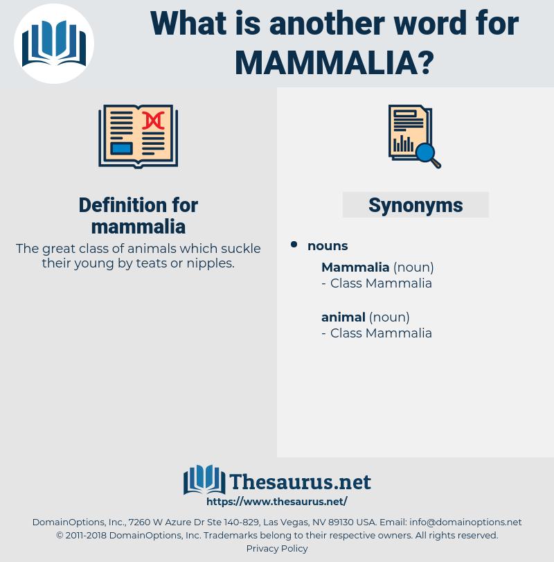 mammalia, synonym mammalia, another word for mammalia, words like mammalia, thesaurus mammalia