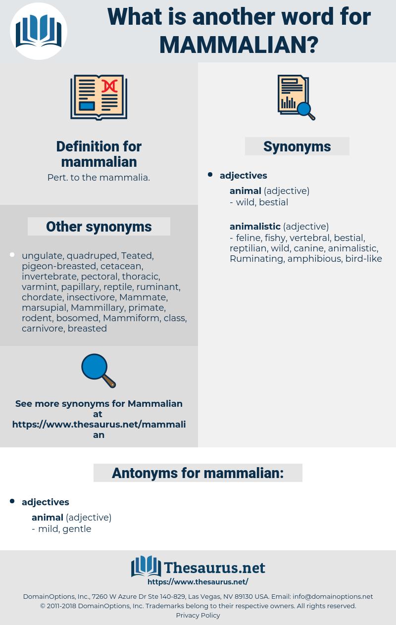 mammalian, synonym mammalian, another word for mammalian, words like mammalian, thesaurus mammalian