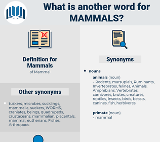 Mammals, synonym Mammals, another word for Mammals, words like Mammals, thesaurus Mammals