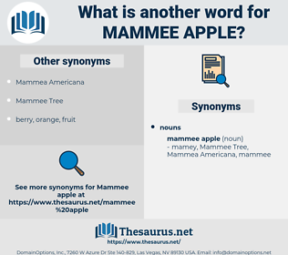 Mammee Apple, synonym Mammee Apple, another word for Mammee Apple, words like Mammee Apple, thesaurus Mammee Apple