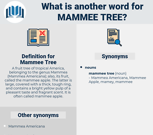 Mammee Tree, synonym Mammee Tree, another word for Mammee Tree, words like Mammee Tree, thesaurus Mammee Tree