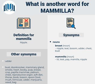 mammilla, synonym mammilla, another word for mammilla, words like mammilla, thesaurus mammilla