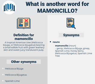 mamoncillo, synonym mamoncillo, another word for mamoncillo, words like mamoncillo, thesaurus mamoncillo