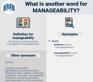 manageability, synonym manageability, another word for manageability, words like manageability, thesaurus manageability