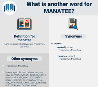manatee, synonym manatee, another word for manatee, words like manatee, thesaurus manatee