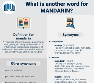 mandarin, synonym mandarin, another word for mandarin, words like mandarin, thesaurus mandarin