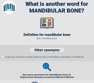 mandibular bone, synonym mandibular bone, another word for mandibular bone, words like mandibular bone, thesaurus mandibular bone