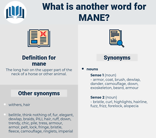 mane, synonym mane, another word for mane, words like mane, thesaurus mane