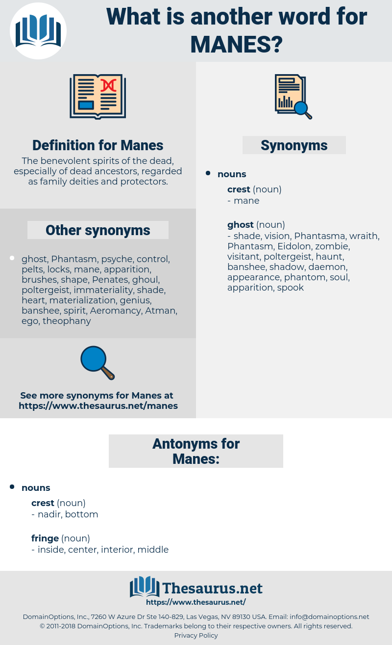Manes, synonym Manes, another word for Manes, words like Manes, thesaurus Manes