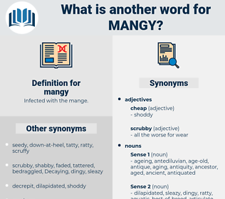 mangy, synonym mangy, another word for mangy, words like mangy, thesaurus mangy