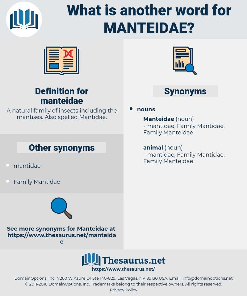 manteidae, synonym manteidae, another word for manteidae, words like manteidae, thesaurus manteidae