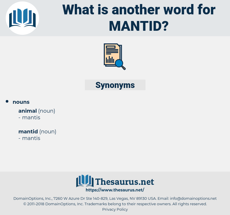 mantid, synonym mantid, another word for mantid, words like mantid, thesaurus mantid
