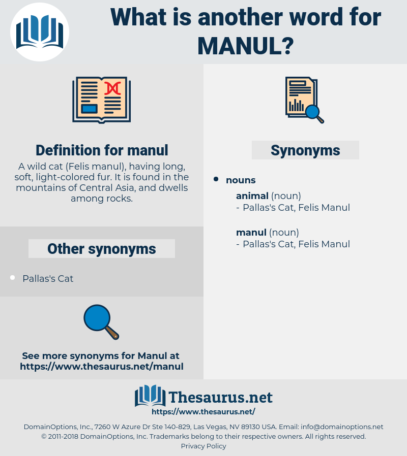 manul, synonym manul, another word for manul, words like manul, thesaurus manul