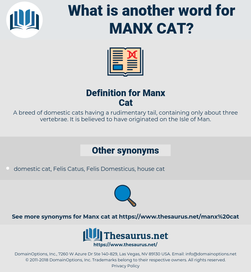 Manx Cat, synonym Manx Cat, another word for Manx Cat, words like Manx Cat, thesaurus Manx Cat
