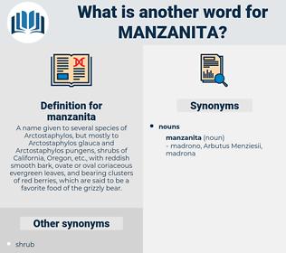 manzanita, synonym manzanita, another word for manzanita, words like manzanita, thesaurus manzanita