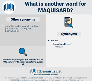 maquisard, synonym maquisard, another word for maquisard, words like maquisard, thesaurus maquisard