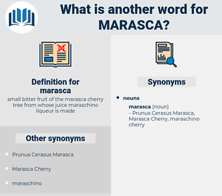 marasca, synonym marasca, another word for marasca, words like marasca, thesaurus marasca