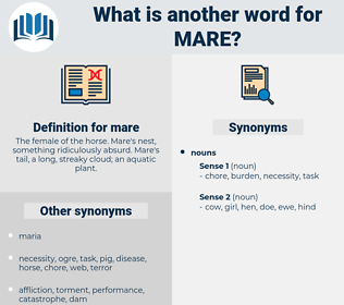 mare, synonym mare, another word for mare, words like mare, thesaurus mare