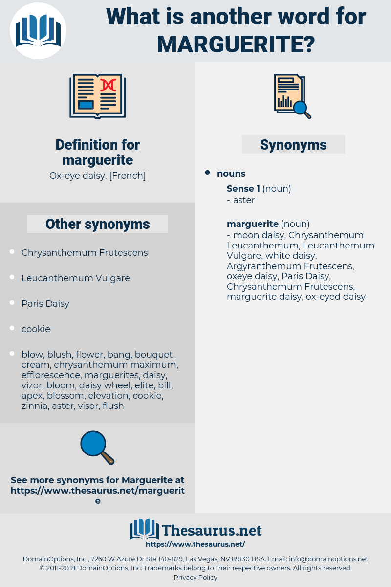 Synonyms for MARGUERITE - Thesaurus net