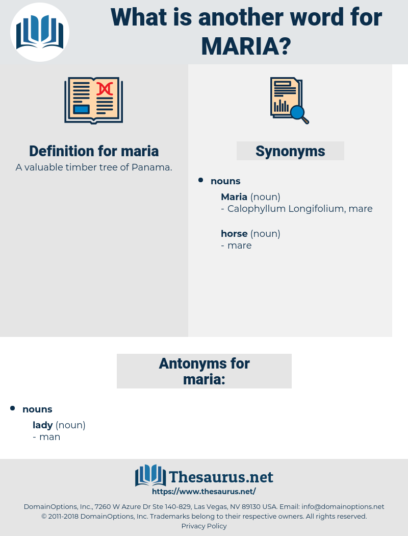 maria, synonym maria, another word for maria, words like maria, thesaurus maria