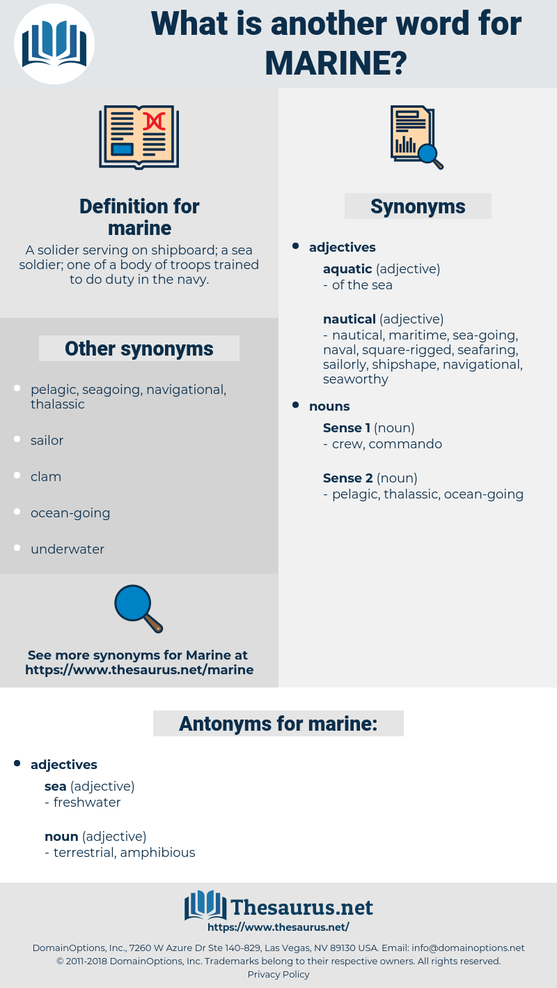 marine, synonym marine, another word for marine, words like marine, thesaurus marine