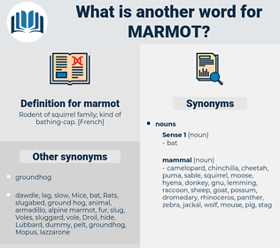 marmot, synonym marmot, another word for marmot, words like marmot, thesaurus marmot