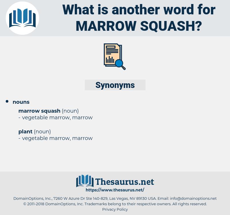 marrow squash, synonym marrow squash, another word for marrow squash, words like marrow squash, thesaurus marrow squash