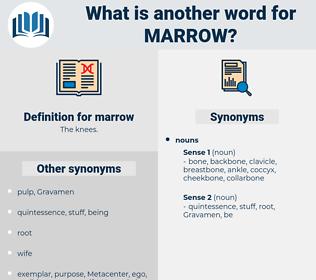 marrow, synonym marrow, another word for marrow, words like marrow, thesaurus marrow