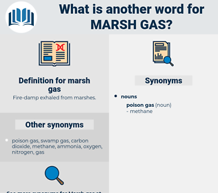 marsh gas, synonym marsh gas, another word for marsh gas, words like marsh gas, thesaurus marsh gas