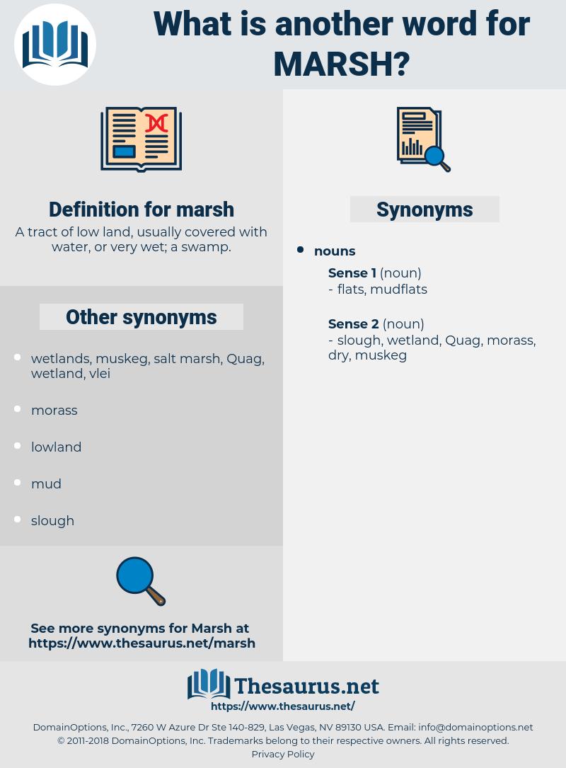 marsh, synonym marsh, another word for marsh, words like marsh, thesaurus marsh