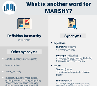 marshy, synonym marshy, another word for marshy, words like marshy, thesaurus marshy